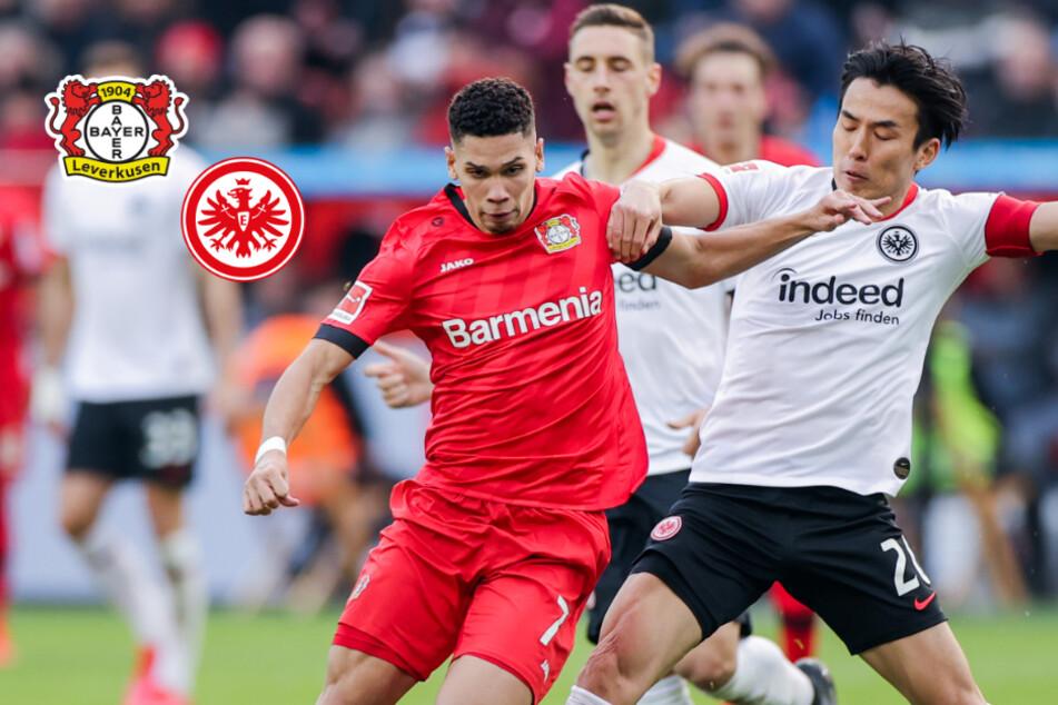 """Bayer Leverkusen: """"Hoffen, dass uns das zugestanden wird, was dem FC Bayern zugestanden wurde"""""""