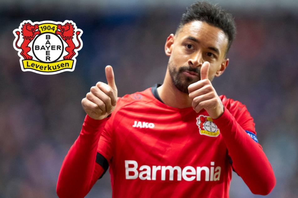 Leverkusen verlängert mit Nationalspieler Bellarabi bis 2023