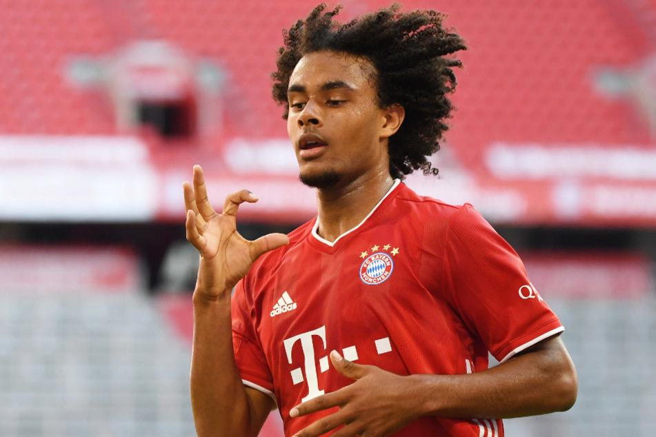 Wird Joshua Zirkzee (20) den FC Bayern München in diesem Sommer verlassen? Die Verantwortlichen würden sich über einen Abnehmer wohl freuen.