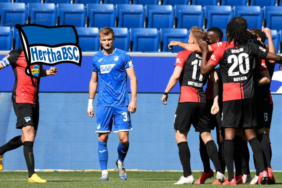 """Furioses Labbadia-Debüt als Hertha-Coach! """"Alte Dame"""" demontiert Hoffenheim"""