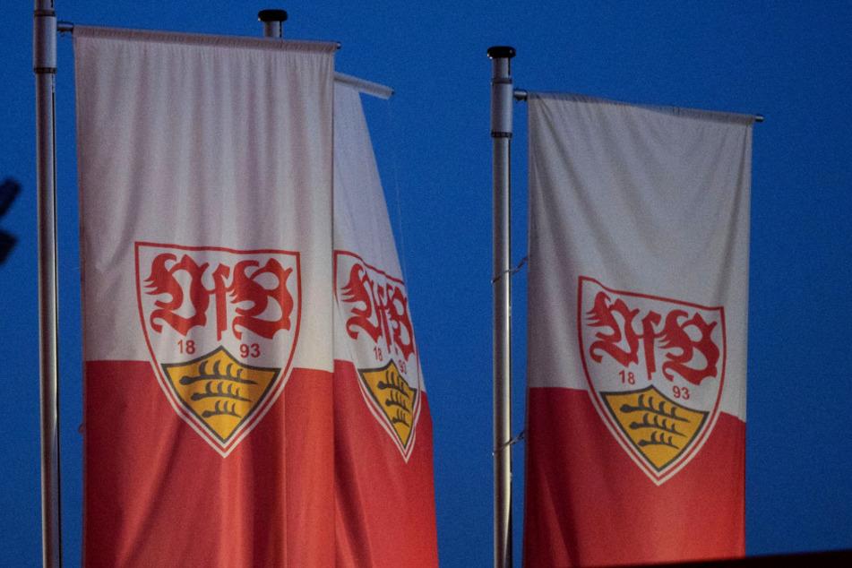 VfB-Datenskandal: Keine Einigung mit gekündigten Führungskräften