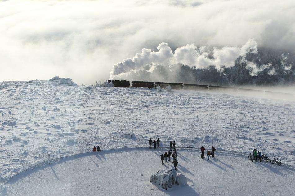 Die Harzer Schmalspurbahn bahnt sich ihren Weg auf den schneebedeckten Brocken. Bilder wie dieses sind in den vergangenen Jahren immer seltener geworden.