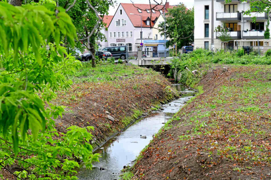 In Dresden ist unter anderem der Kaitzbach besonders betroffen.