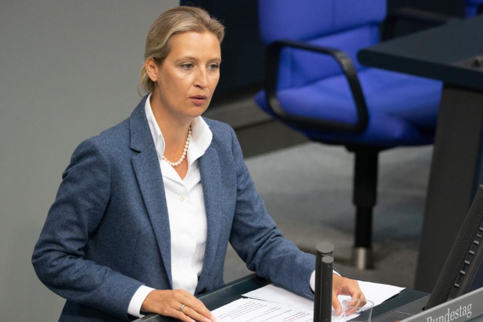 Alice Weidel spricht im Bundestag. (Archivbild)