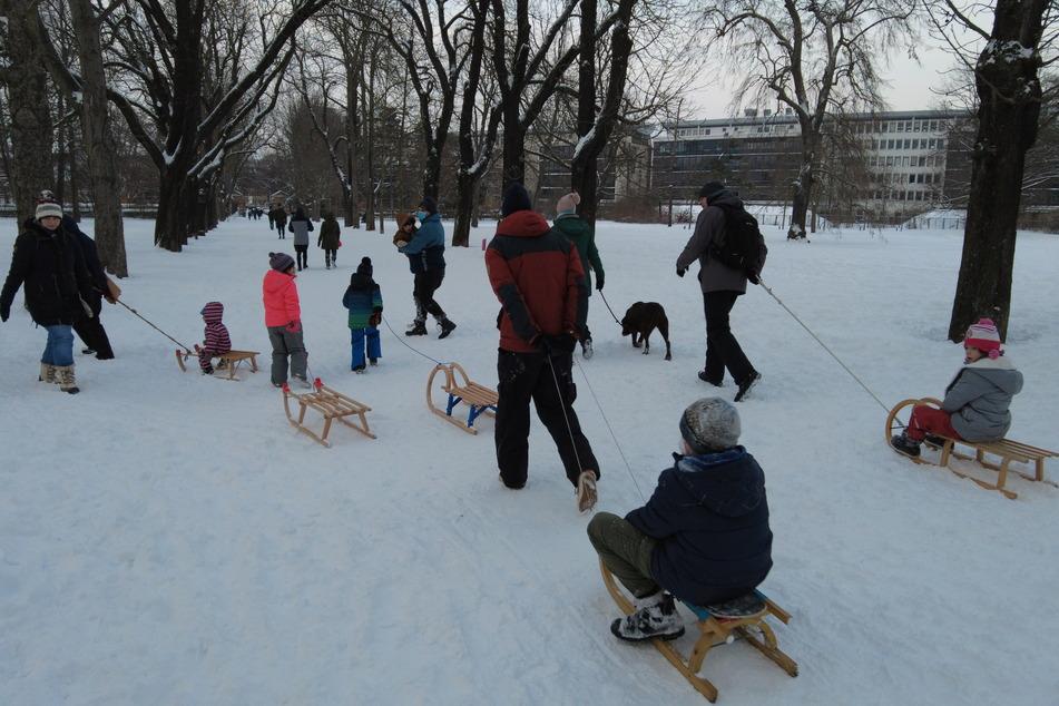 Wie hier im Friedenspark (Zentrum-Südost) waren viele Eltern mit ihren Kindern auf dem Schlitten unterwegs.