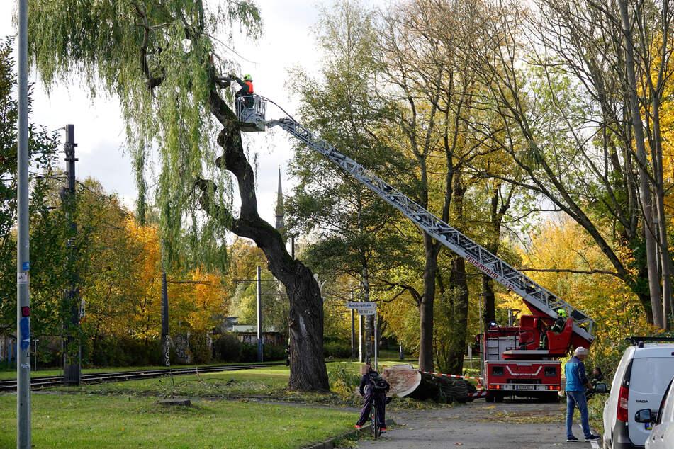 Chemnitz: Zahlreiche Schäden und drei Verletzte nach Sturmtief in Chemnitz und Umgebung
