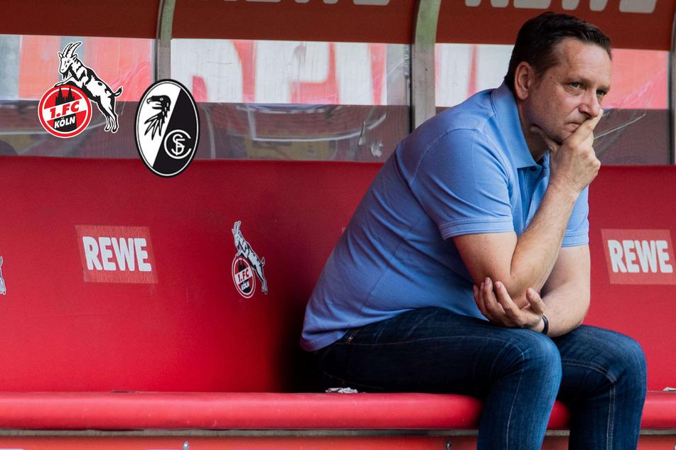 Abstiegssorgen verschärfen sich! 1. FC Köln kassiert gegen SC Freiburg klare Heimpleite