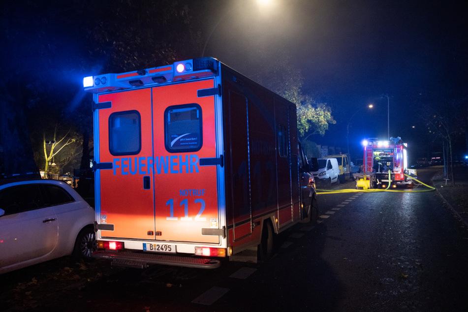 Autofahrer bemerken Feuer in Waldstück: Zahlreiche Tiere sind tot