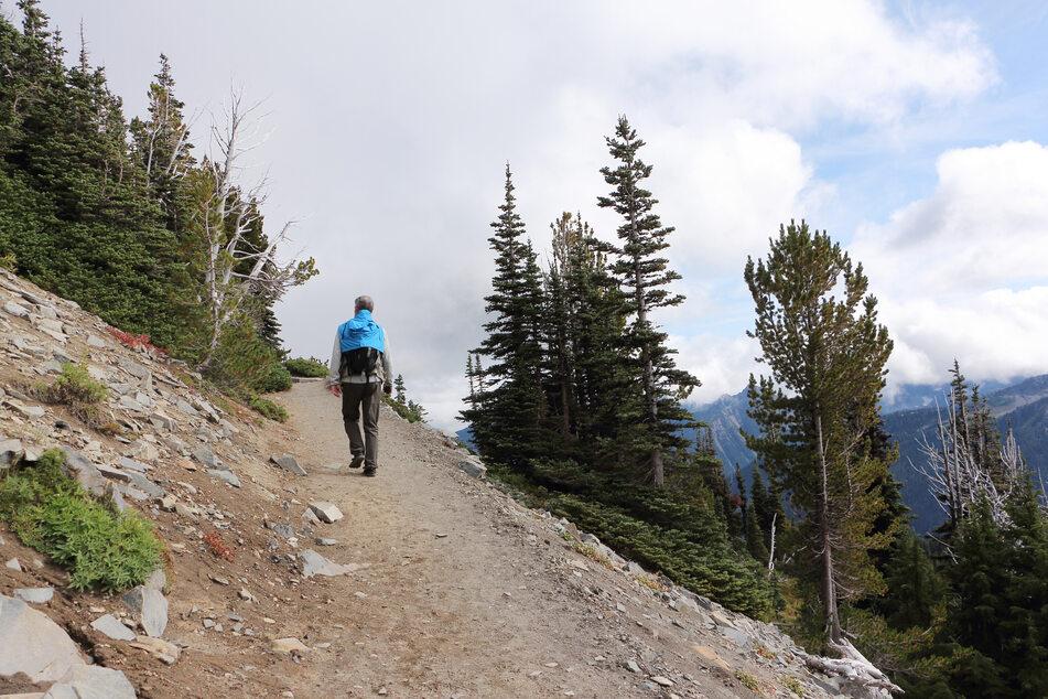 Der 80-Jährige hatte eine Wander-Tour auf dem Calmont-Klettersteig zwischen Ediger-Eller und Bremm (Kreis Cochem-Zell) unternommen (Symbolfoto).