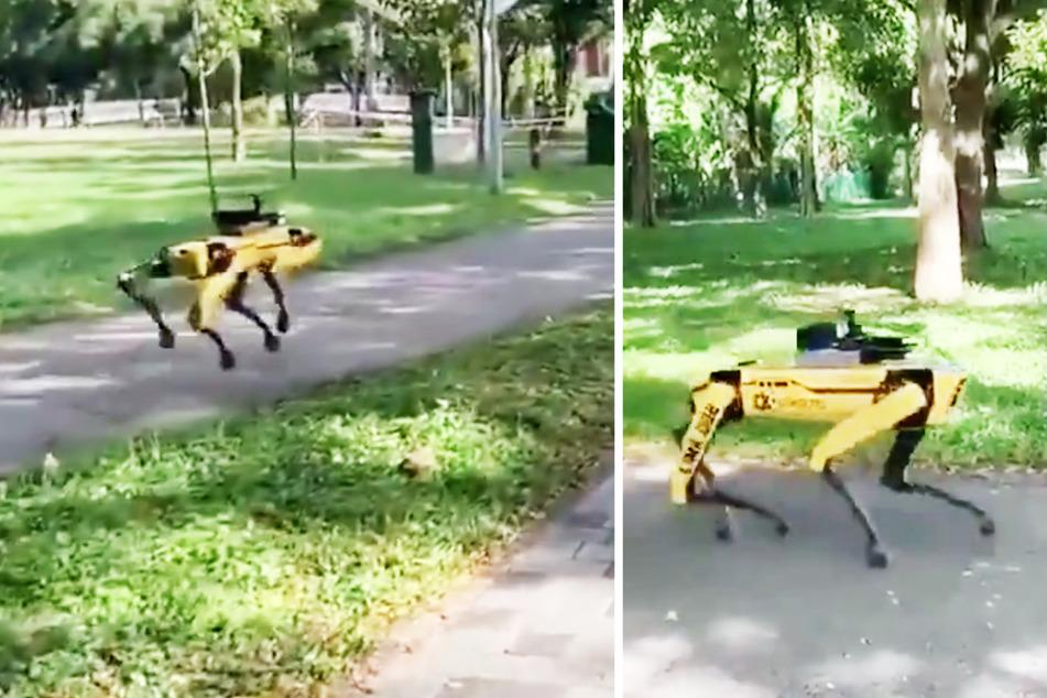 In dieser Stadt kontrolliert jetzt ein Roboter-Hund die Abstandsregeln!