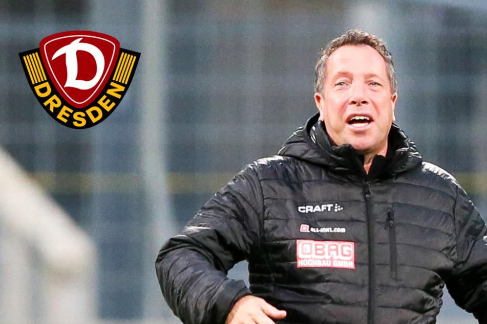 Dynamo-Coach Kauczinski will für Fans an TV-Geräten siegen!