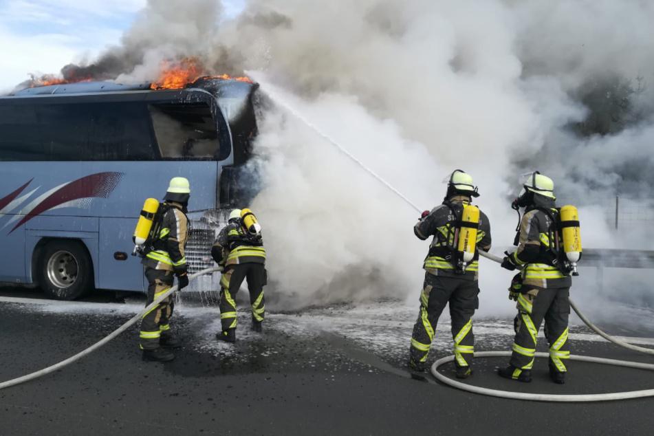 Die Feuerwehr bei den Löscharbeiten. Der Reisebus brannte vollständig aus.