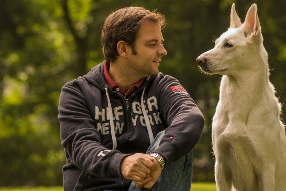 Neue RTL-Show: Hunde-Profi Martin Rütter kümmert sich um tierische Sorgenkinder