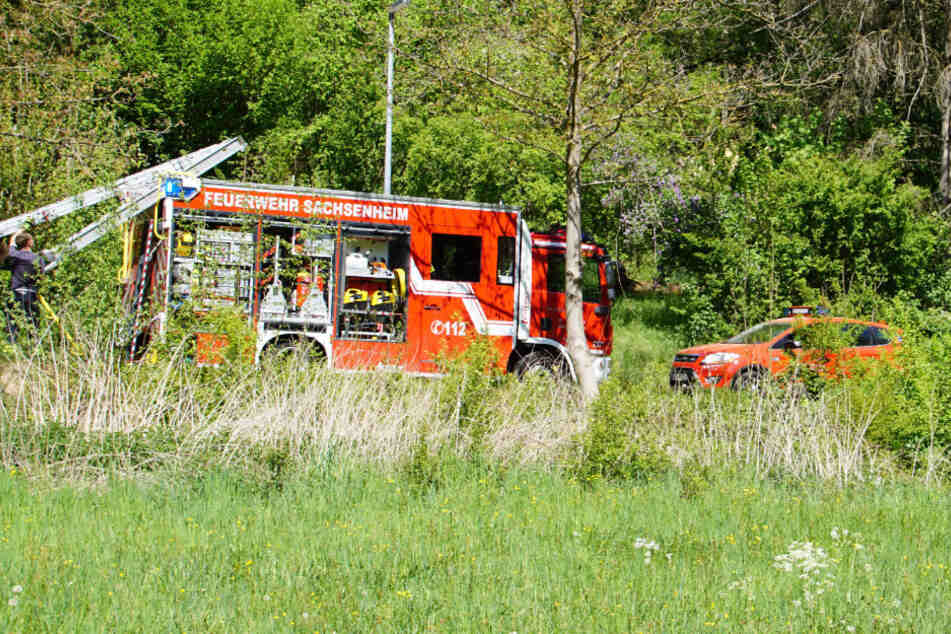 Schrecklicher Fund: Teenager (19) tot aus der Weser geborgen