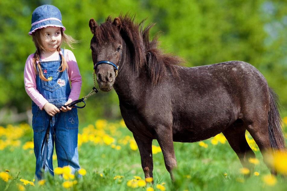 Kinder können bei dem Fest auch Ponys reiten (Symbolbild).