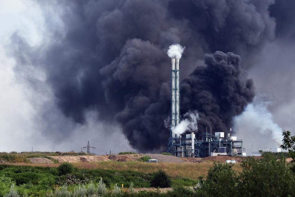 Die Rauchwolke nach der Explosion zog Hunderte Meter hoch in den Himmel.