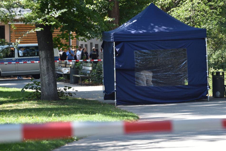 Berlin: Kopfschuss-Mord in Tiergarten: Mutmaßlicher Täter durch Zufall festgenommen