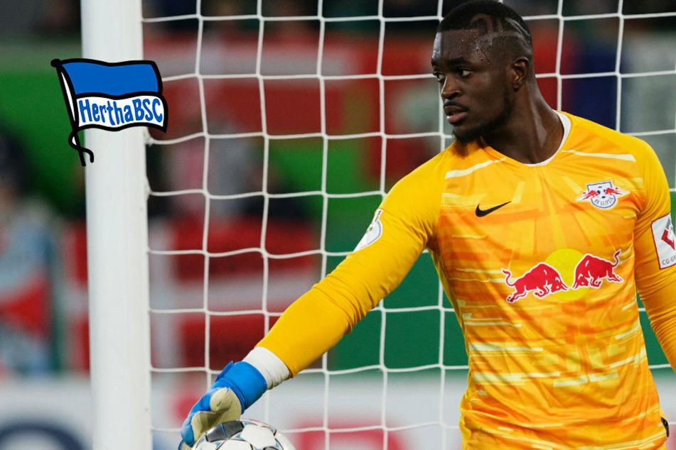 Transfer-Gerücht: Schnappt sich Hertha BSC Leipzig-Torwart Yvon Mvogo?