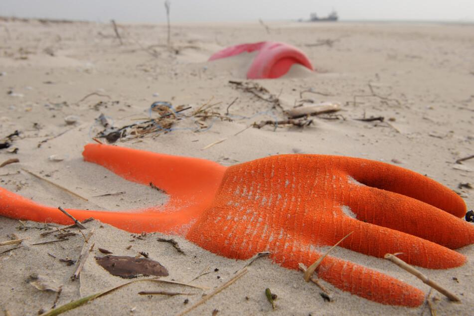 Müll am Ostseestrand: Freiwillige wollen die Küsten putzen