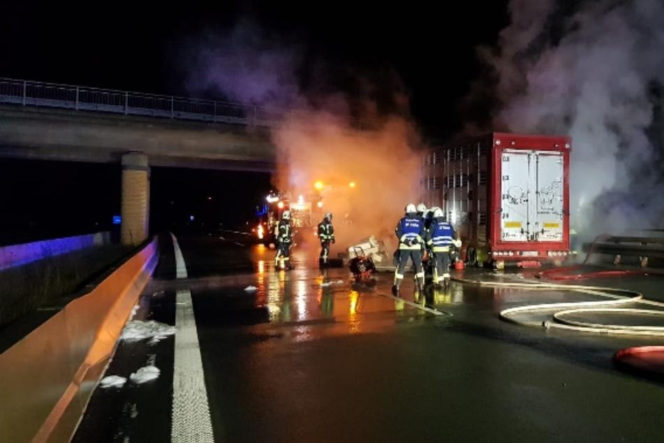 Feuerwehreinsatz auf der A14: Schweinelaster bricht in Flammen aus, mehrere Tiere sterben