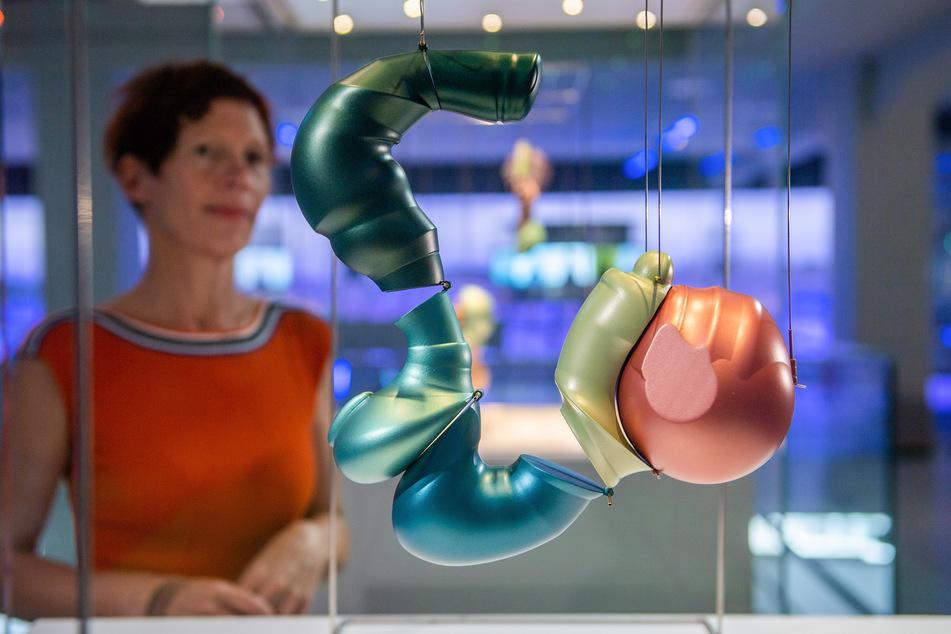 Künstlerin Beate Eismann (51) blickt auf eine ihrer Embryogehirn-Darstellungen.