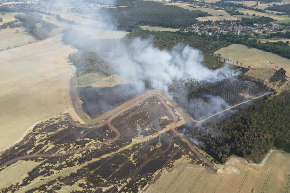 Rund vier Hektar Feld und Wald brannten am Sonntag im Landkreis Wittenberg ab,