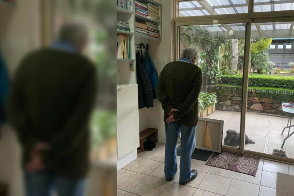 Gebannt wartet der Mann, wie der Hund wohl reagieren wird.