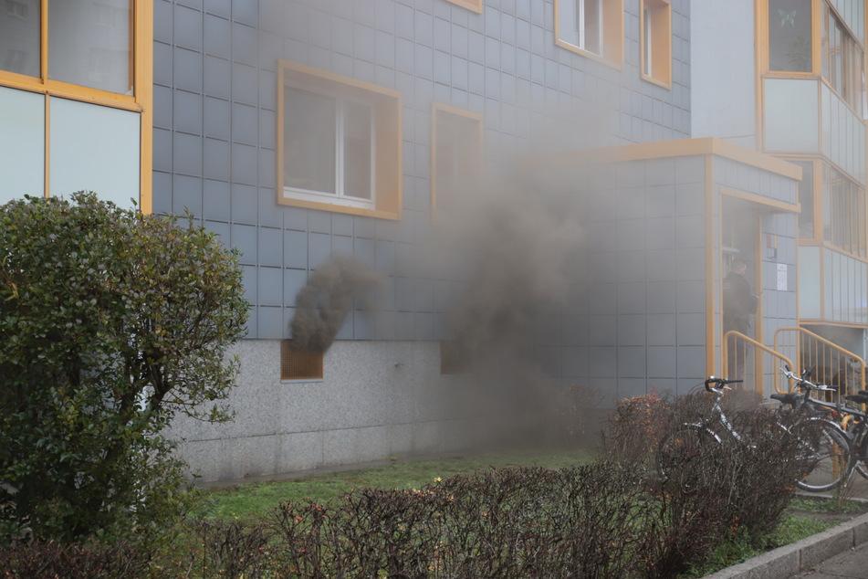 Teile einer Stromverteileranlage sowie angrenzende Kellerverschläge waren in Brand geraten.