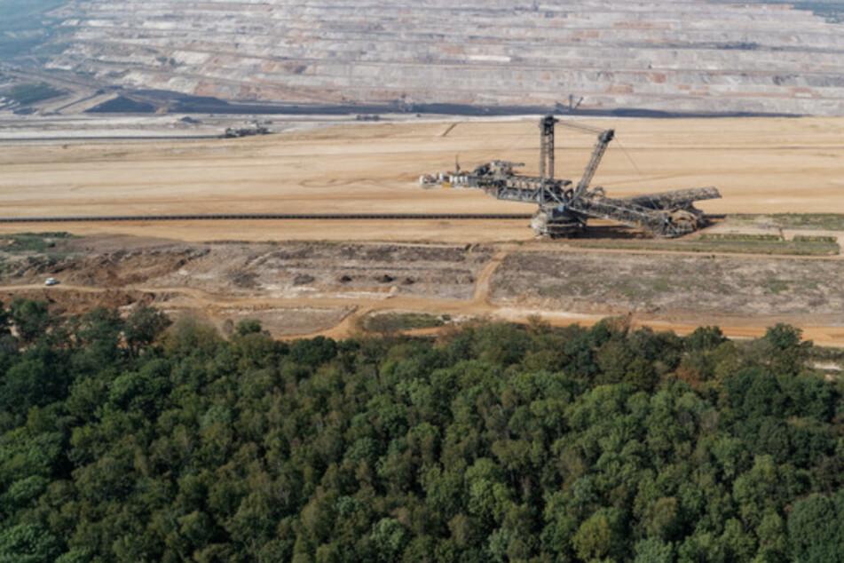 NRW und der Braunkohle-Ausstieg: Streit um Milliarden und den Hambacher Forst