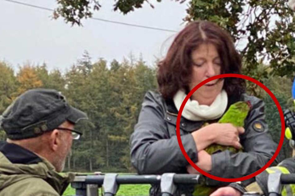 Ungewöhnlicher Einsatz: Feuerwehr rettet Papagei aus 30 Metern Höhe