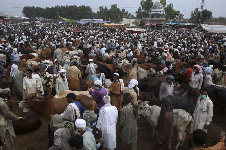 Auf einem Viehmarkt in Pakistan tragen zwar viele eine Schutzmaske, aber der Sicherheitsabstand wird dort sicher nicht eingehalten. Nun öffnet Pakistan seine Grenzen Richtung Indien wieder. (Archivbild)