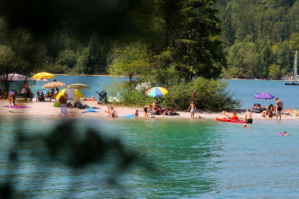 Badegäste zogen den leblosen Mann aus dem Walchensee ans Ufer. (Symbolbild)