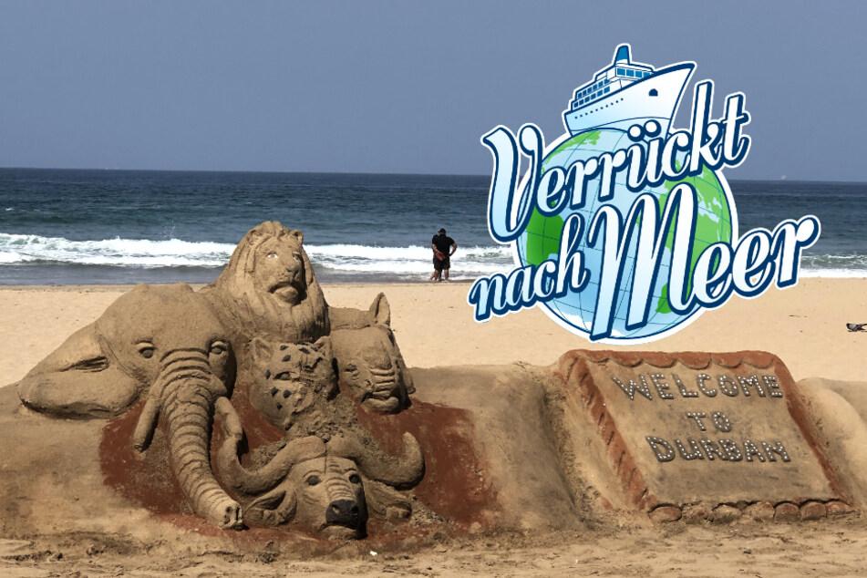 """""""Verrückt nach Meer"""" heute: Nervenkitzel und spannende Eindrücke im südafrikanischen Durban"""