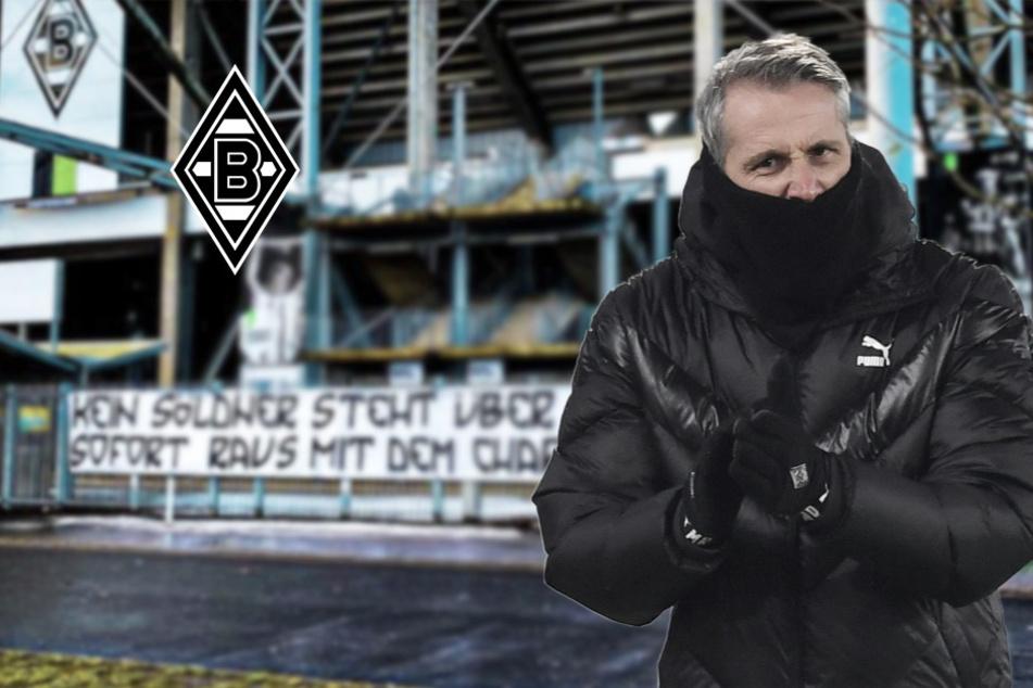 Situation um Marco Rose eskaliert: Gladbach-Fans beschimpfen ihren Trainer übel!