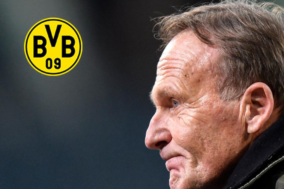BVB-Hammer: Boss Watzke hört doch nicht auf und unterzeichnet neuen Vertrag!
