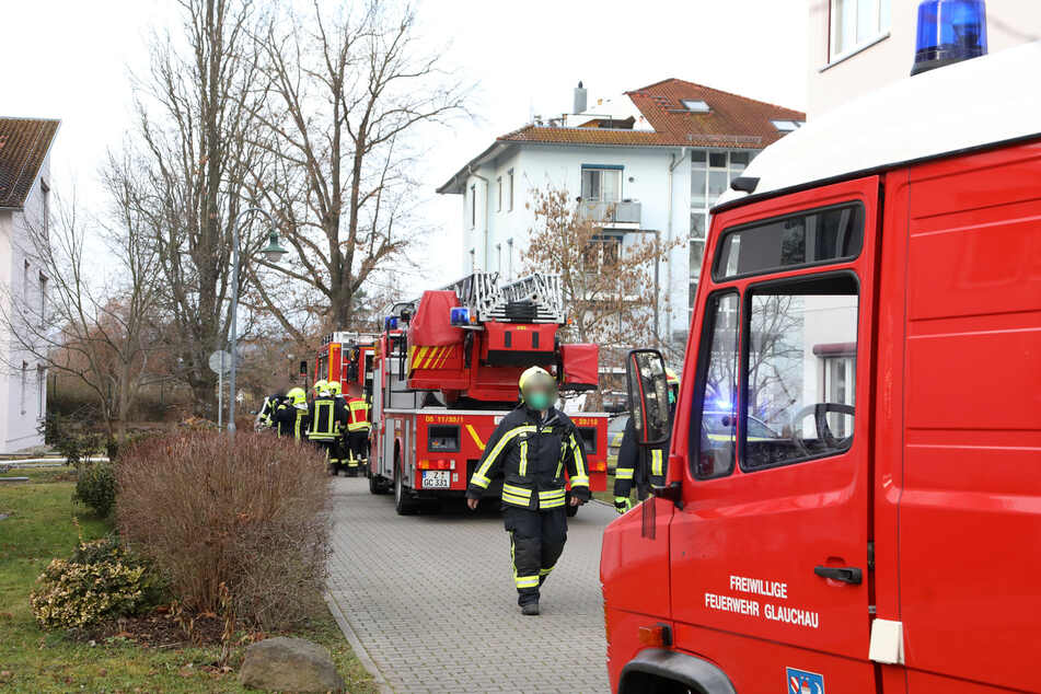 Die Feuerwehr rückte mit mehreren Einsatzfahrzeugen an und löschte den Brand.