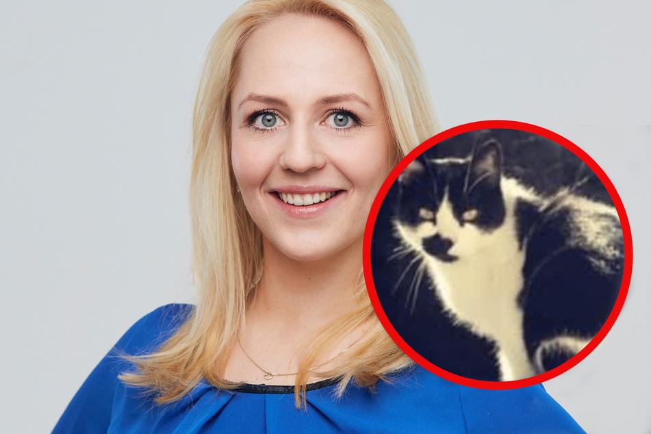 """""""Wir hoffen trotzdem weiter!"""" MDR-Fee Henriette Grützner sucht Kater Felix"""