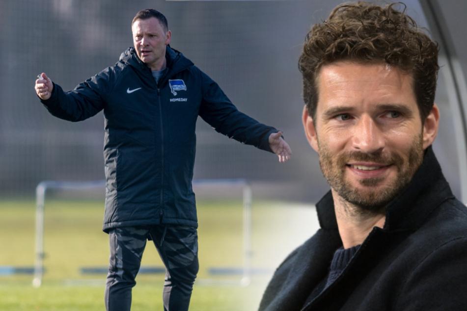 Pal Dardai (l.) soll Hertha BSC von der Abtsiegszone fernhalten. Holt Arne Friedrich noch einen Neuen?