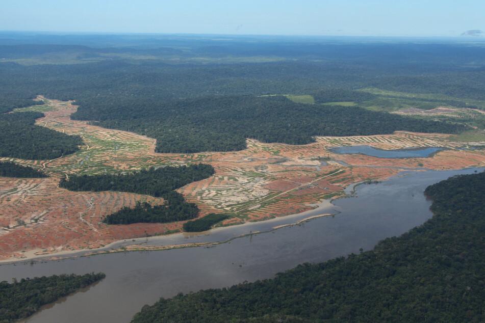 Brasilien: Entwaldete Waldflächen sind am Rande des Juruena-Nationalpark im Amazonas-Regenwald zu sehen.