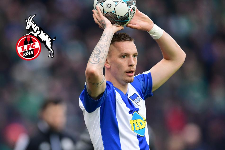 Last-Minute: 1. FC Köln leiht Marius Wolf vom BVB für die Offensive