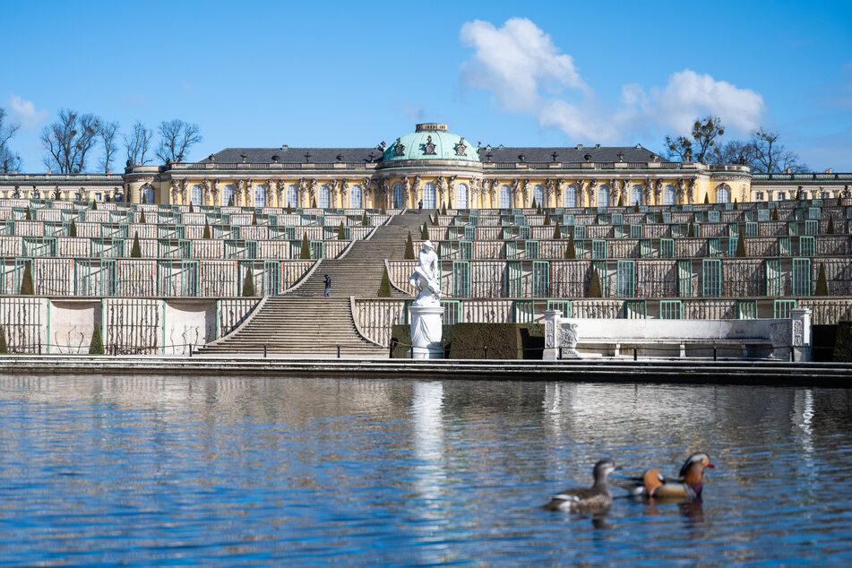 Das Schloss Sanssouci öffnet nach der Corona-Pause wieder.