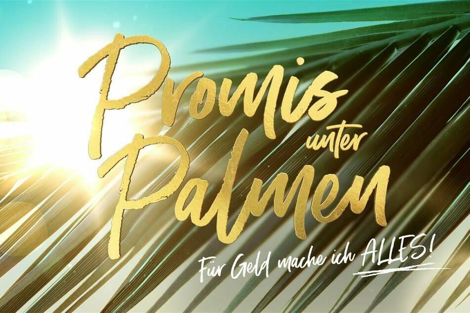 """Bei der Produktion der neuen Staffel von """"Promis unter Palmen"""" soll es bereits den zweiten Eklat innerhalb kurzer Zeit gegeben haben."""
