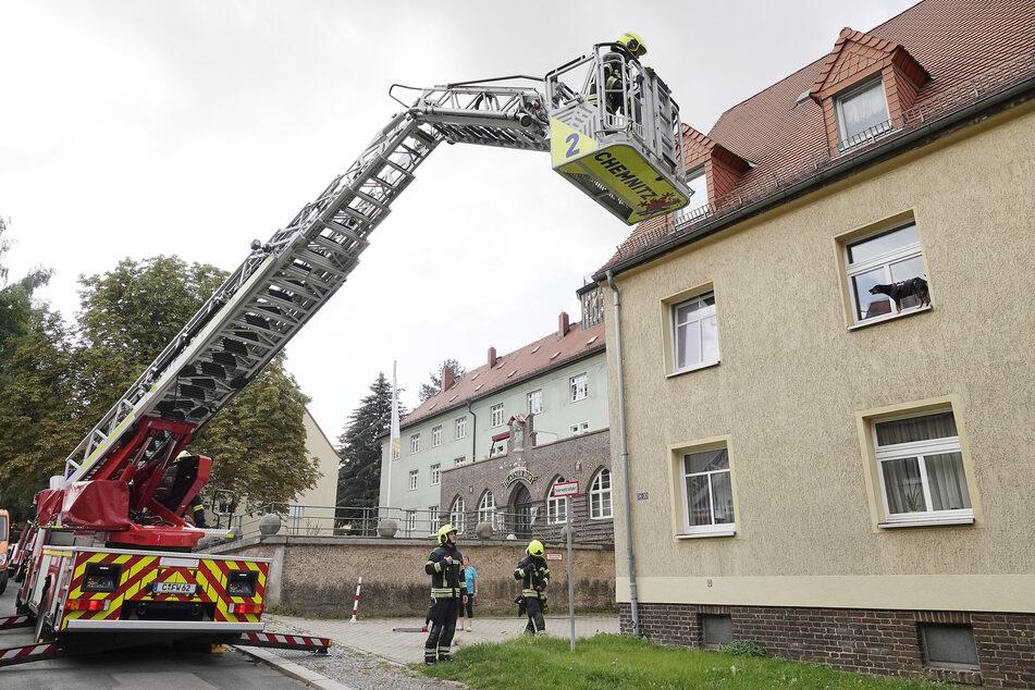 Ein verzweifelter Hund saß am Donnerstag auf einem Fensterbrett im ersten Stock eines Mehrfamilienhauses in Chemnitz fest. Die Feuerwehr rückte mit einer Drehleiter an.