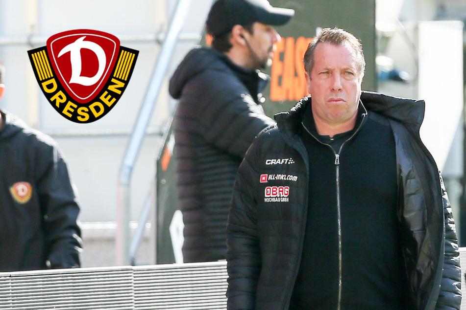 """Scheute Dynamo zum Schluss das absolute Risiko? Coach Kauczinski: """"Ja, am Ende schon"""""""