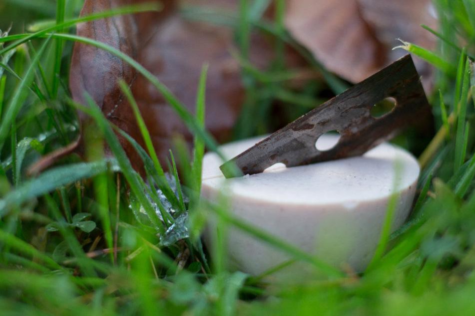 Tierhasser legen Köder mit Rasierklingen aus: Polizei sucht Zeugen