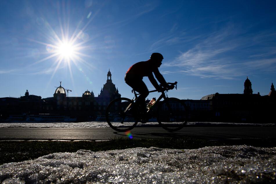 Ein Radfahrer fährt bei Sonnenschein auf dem Elberadweg in Dresden.
