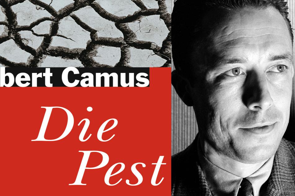 """Dresden: Leben im Angesicht der Seuche: Neuer alter Bestseller """"Die Pest"""""""