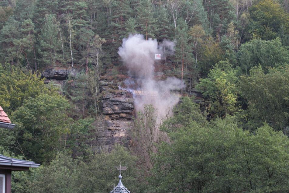 Per Sprengung wurden die Bäume entsorgt.