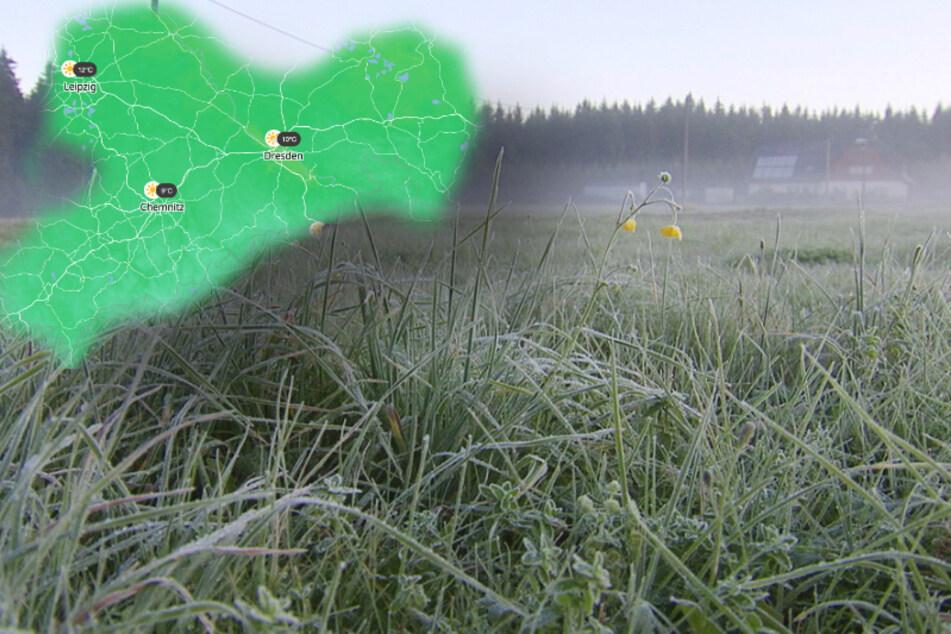 Kälteschock im Juli! Bodenfrost in Sachsen
