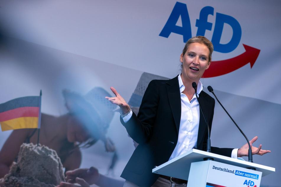 Dieses Ergebnis wird Alice Weidel (42), Spitzenkandidatin der AfD für die Bundestagswahl freuen. Ihre Partei ist bei Kindern und Jugendlichen die beliebteste Partei.